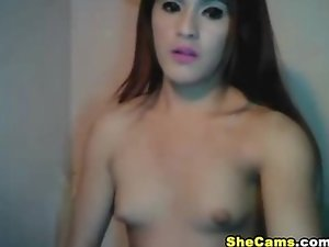 Big Tits Shemale Masturbating