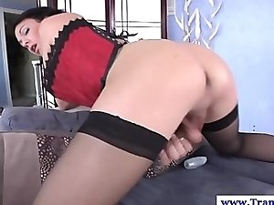 Shemale amateur tranny solo pleasuring
