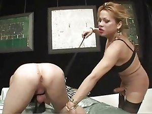 Mireya Shemale Domination